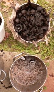 black walnut hulls and dye bath