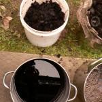 black walnut hulls and second dyebath