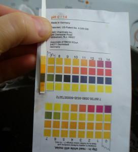 madder bath pH with half teaspoon soda ash