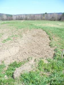 April 13 Amethyst Farm