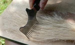 rough hetchel with spiky comb