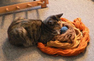Pippi on the yarns