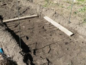 pressing down the soil