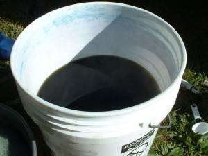 alkaline woad vat