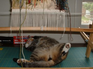 tapestry nap