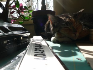 Pippi and ruler