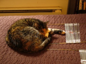 Pippi with heddles