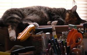 Pippi amid tools