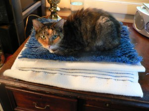 Pippi helps with the hemming