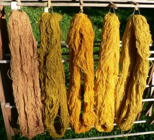 all marigold and St.-John's-wort skeins