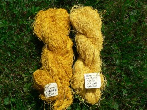 weld dyed 40/2 linen yarns