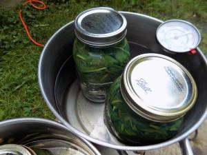 jars in modified double boiler