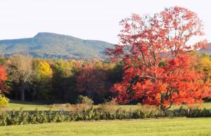 October 10 Mount Norwottuck