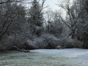 Sunday snow scene